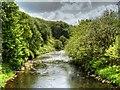 SD7916 : River Irwell, Downstream from Ramsbottom Bridge by David Dixon