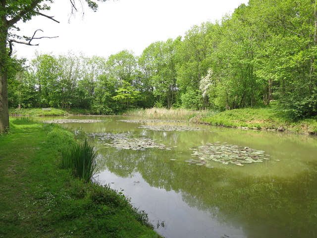 Pond at marle place gardens oast house archive cc by sa for Garden pond kent