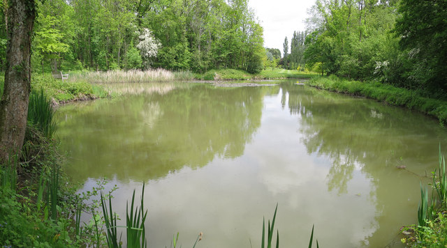 Pond at marle place gardens oast house archive for Garden pond kent