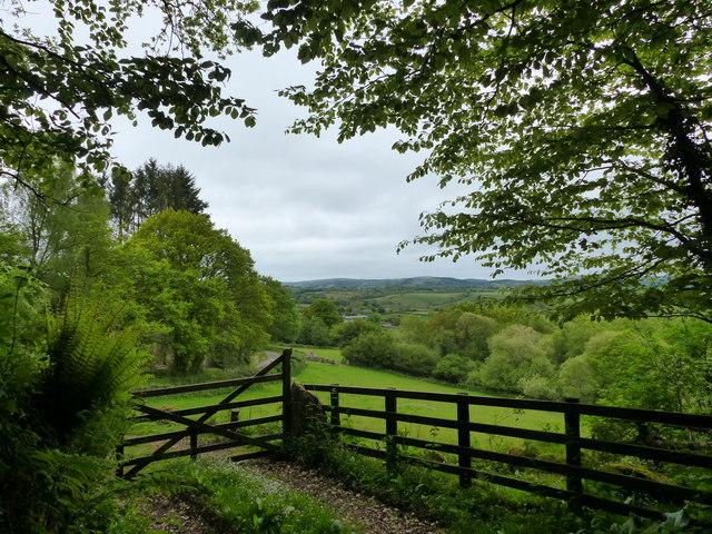 A field at the edge of  Manaton, Dartmoor