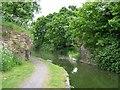 TQ0280 : Bridge 5, Slough Arm, Grand Union Canal by Rob Emms