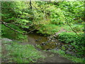 SE1327 : Stepping stone crossing of Royds Hall Beck, North Bierley by Humphrey Bolton