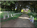 TL4966 : Military graves by Hugh Venables