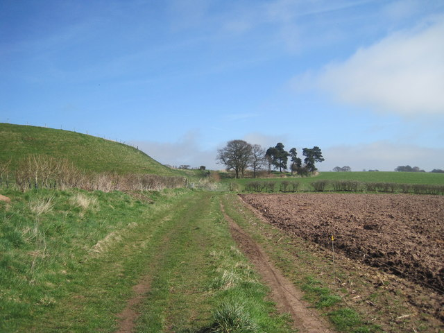 Footpath along the field edge at Hanginstone Hill
