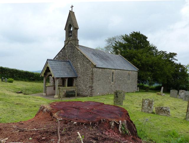 Penterry Church felled tree stump