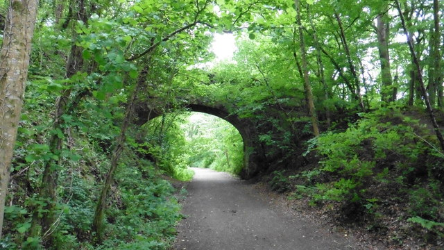 Bridge to blackmoor Copse over the disused railway line, near Bovey Tracey