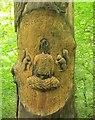 ST5578 : Blaise Castle Estate tree art by Derek Harper