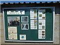 TF1807 : Notice board on public shelter by Bob Harvey