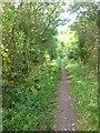 TL3857 : Heading towards Comberton by Dave Thompson