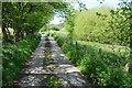 SJ0553 : Drive to Maes-tyddyn-uchaf by Philip Halling