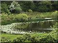 R2688 : Tirmicbran Lough by Margaret Barton