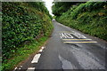 SX5352 : Fordbrook Lane by jeff collins