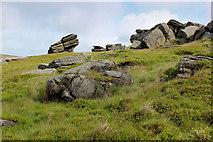 SD9334 : Dove Stones (2) by Chris Heaton