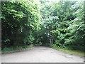 SU7491 : Track on Turville Heath by David Howard