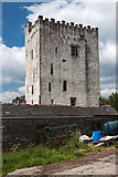 S4421 : Castles of Leinster: Tibberaghny, Kilkenny (1) by Mike Searle