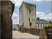 S4421 : Castles of Leinster: Tibberaghny, Kilkenny (3) by Mike Searle