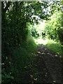 TL3353 : Bridleway near Kingston by Dave Thompson