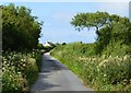 SS2215 : Country lane, Shop, Cornwall by Oswald Bertram