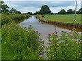 SJ7858 : Trent & Mersey Canal near Hassall Green by Mat Fascione