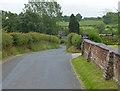 SJ7758 : Mill Lane at Butchers Bank Farm by Mat Fascione