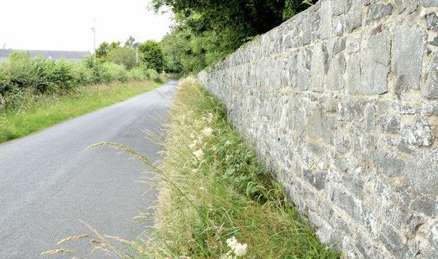 Mount Stewart estate wall, Newtownards/Greyabbey (July 2015)