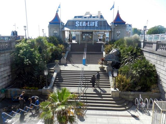 The Sea Life Centre at Brighton