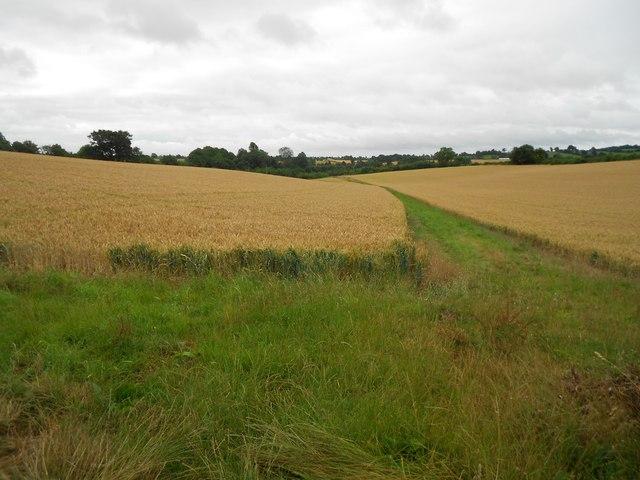 Banbury: Arable land off Wykham Lane