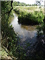 SE3010 : The River Dearne north of Darton by Neil Theasby