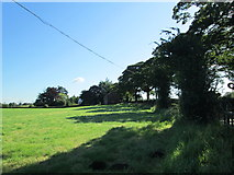 SJ8970 : Field near Gawsworth by David Weston