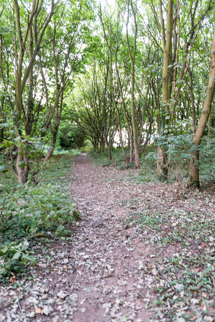 England Coast Path north of Trimingham
