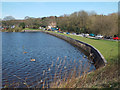SP1095 : The dam to Powell's Pool, Sutton Park south by Robin Stott