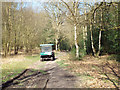 SP1096 : Park rangers' wagon heading north, Sutton Park by Robin Stott