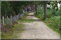 SU9154 : Track, Ash Ranges by Alan Hunt