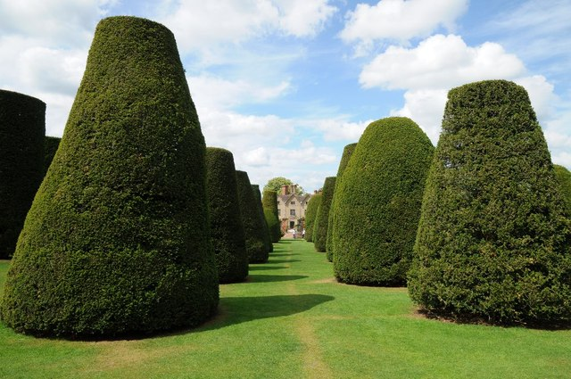 The Yew Garden, Packwood House