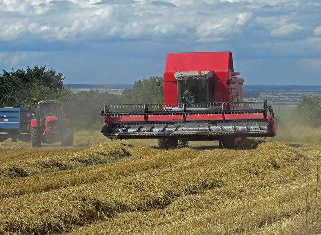 Harvesting near Horkstow