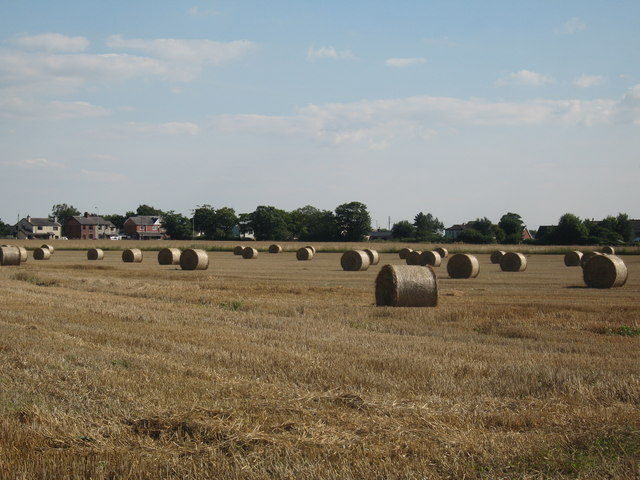 Bales of Straw, Plex Moss Lane
