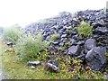 SX3580 : Old quarried stone, Greystone Quarry by David Smith