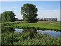 TL6181 : River Lark by Hugh Venables