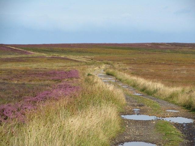 Old moorland trackway