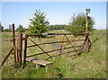 ST7569 : A gate with stile by Neil Owen