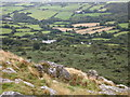 SX2673 : Henwood From Sharp Tor by Chris Andrews