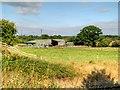 SJ4672 : Hob Goblin Farm by David Dixon