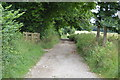 TQ3309 : Bridleway north of Stanmer by N Chadwick