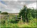 SJ4372 : Gate, Stile and Signpost, Picton Lane by David Dixon