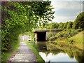 SJ4272 : Shropshire Union Canal Bridge 135B by David Dixon