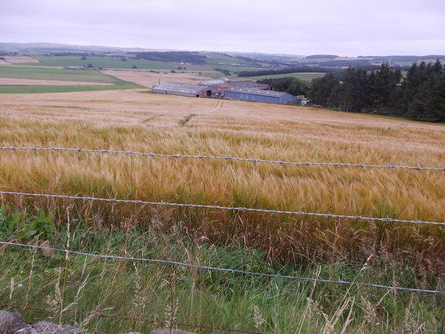 Savills | House for sale in East Auchronie, Aberdeenshire