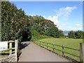 SX9778 : Cycle path to Dawlish Warren by David Smith