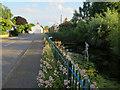 TL3874 : Village pond, Earith by Hugh Venables