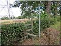 SJ4973 : Stile and footpath near Alvanley by Jeff Buck