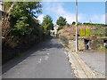 SE0319 : Dyson Lane - looking towards Rochdale Road by Betty Longbottom